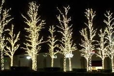 CHRISTMAS OUTSIDE LIGHTING